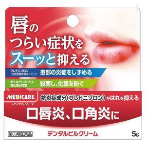 【第2類医薬品】  メディケア デンタルピルクリーム 5g
