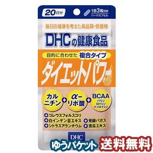 DHC 20日分 ダイエットパワー 60粒 ゆうメール選択で送料80円
