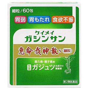 【第2類医薬品】  恵命我神散S(ガジュツ) 細粒 60包
