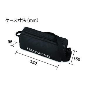 HAMMOND ハモンド PRO-24B 鍵盤ハーモニカ エレアコ バスモデル
