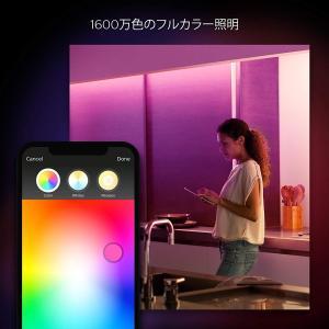 Philips Hue(ヒュー) ライトリボン プラス エクステンション 915005241701【...