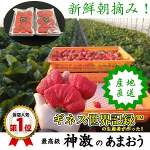 いちご イチゴ 苺 贈り物 お礼 果物 送料無料 ギフト 旬 フルーツ 1箱 2パック 高級 神激の...