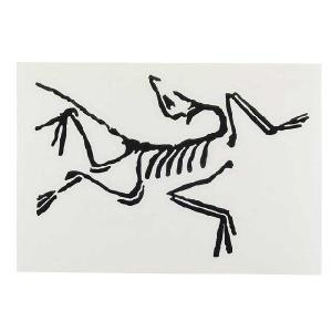 Arc'teryx(アークテリクス) Arc'teryx STICKER アークテリクス ステッカー 抜き黒文字 beside-mountain
