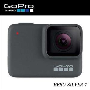 正規輸入品 microSD 7用デュアルチャージャープレゼント GoPro ウェアラブルカメラ HE...