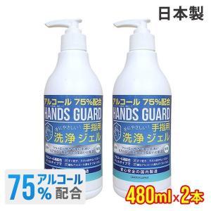 エタノール 75% 日本製 480ml 2本セット アルコール ポンプ ボトル タイプ ハンズガード  手指 洗浄 ゼル アウトドア ハンドゼル ハンド ジェル bespo