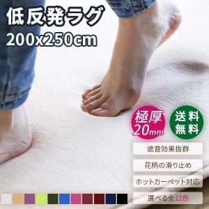 ラグ カーペット ラグマット おしゃれ  厚手 北欧 3畳用 200x250 滑り止め 絨毯 遮音 秋の写真