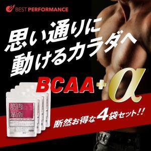 BCAA L-アルギニン ビタミンB群配合でカラダ全快 筋肉...