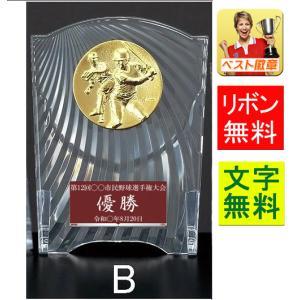 楯(盾)【文字彫刻無料】表彰楯 (樹脂製)W-CL5553-Bサイズ●高さ160mm|best