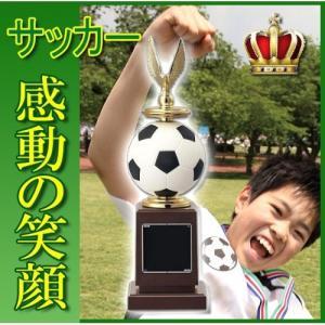トロフィー【文字彫刻無料】人気 サッカートロフィーW-U3556-B ●高さ245mm|best