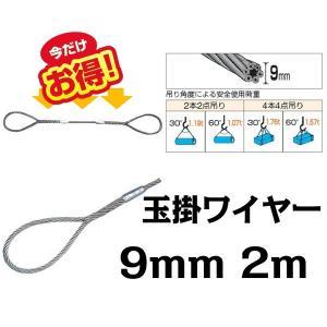 ワイヤー 玉掛けワイヤー 9mm 2m ワイヤーロープスリング セーフティーワイヤー|bestanswe