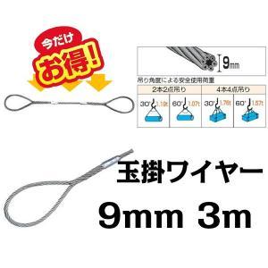 ワイヤー 玉掛けワイヤー 9mm 3m ワイヤーロープスリング セーフティーワイヤー|bestanswe