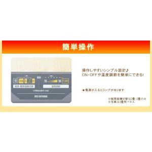 ホットカーペット 1.5畳 電気カーペット ホットマット 暖房器具 シンプル ダニ退治 足元 あたたか タイマー IHC-15-H アイリスオーヤマ bestexcel 05