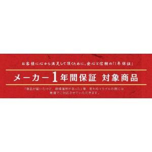 電子レンジ オーブン オーブンレンジ スチーム スチームオーブンレンジ 加熱水蒸気 安い アイリスオーヤマ フラット 一人暮らし 24L MS-2402|bestexcel|12