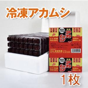 【代引き不可】冷凍天然アカムシ bestfactoryshopping2