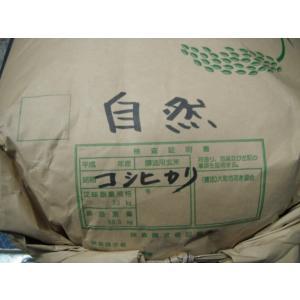 無施肥無農薬栽培長野県安曇野 藤沢雄一郎さんのコシヒカリ量り売り1kg