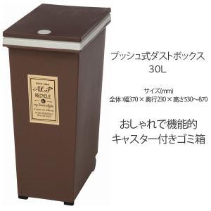 ごみ箱/ダストボックス 30L プッシュ式 ゴミ箱/ダストBOX/くずかご/ダストボックス|bestline
