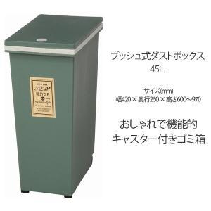 ダストボックス 40L プッシュ式 ゴミ箱/ごみ箱/ダストBOX/くずかご/ダストボックス|bestline
