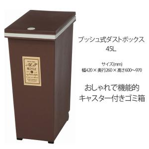 ごみ箱 ダストボックス 40L プッシュ式 ゴミ箱/ダストBOX/くずかご/ダストボックス 人気|bestline