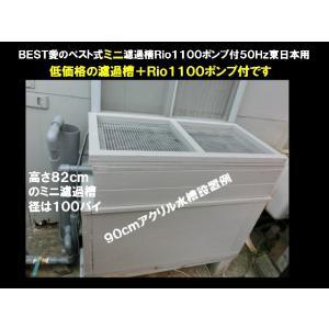 錦鯉 送料3000円 濾過槽 愛のベスト式ミニ濾過装置Rio1100ポンプ付50Hz東日本用