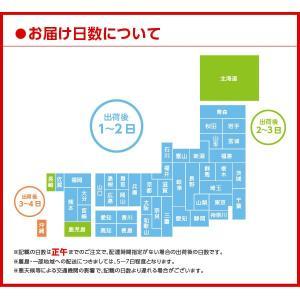 コカ・コーラ社製品 綾鷹 525mlPET 緑...の詳細画像1