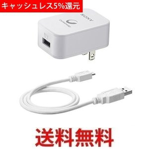 SONY CP-AD2 ソニー USB出力機能付き ACアダプター ソニー製USBポータブル電源用 (USBケーブル同梱) ホワイト|1|bestone1