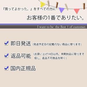 TOSHIBA TY-P1-W 東芝 TYP1...の詳細画像1
