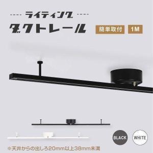 ダクトレール ライティングレール 1m 本体カラー2種類 白/黒 おしゃれ スポットライト 可動範囲...
