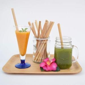 BALIISM Bamboo Straw / 竹でできた天然素材のストロー [2本セット]|bestsupplyshop