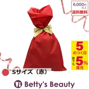 ラッピング用品 ラッピングキット Sサイズ(赤) 幅200×高さ320mm (その他メイクアップ)  BB Others|bettysbeauty