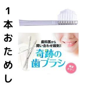 奇跡の歯ブラシ 1本おためし 虫歯予防 汚れ落ち 歯科販売 磨き残し