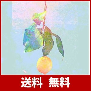 米津玄師 レモン Lemon 映像盤 初回限定 DVD付き 送料無料 特典 アルバム ベスト