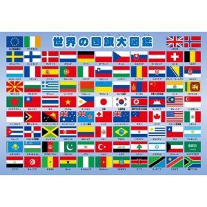 63ピース 子供向けパズル  世界の国旗大図鑑 ピクチュアパズル bfe
