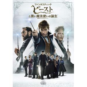 ファンタスティック・ビーストと黒い魔法使いの誕生 [DVD]|bfe