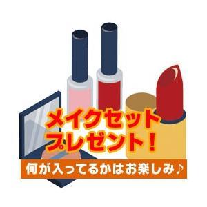 ★純正品/送料無料★ナーズ ブローパーフェクター 1131(0.1 g)|bi-sai-y|02