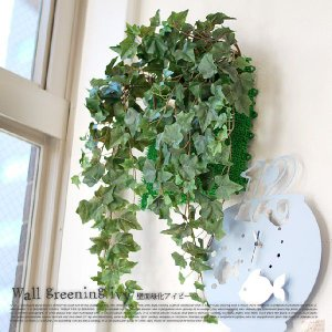壁面緑化アイビー 光触媒 イミテーショングリーン|bicasa