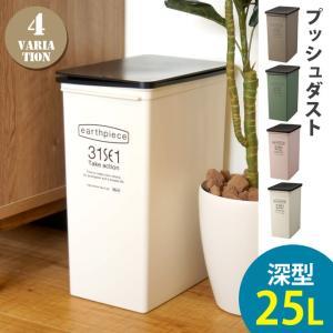 ゴミ箱 プッシュダスト(深) EPE-06