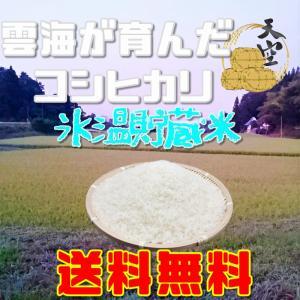 コシヒカリ 新米 5kg 令和元年産 送料無料 岡山 備中産 発送当日精米|bicchu