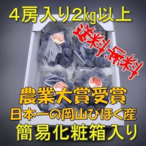 ニューピオーネ 農業大賞受賞日本一の産地 岡山びほく産 化粧箱2kg4房 bicchu
