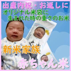 出産内祝い お返し 出生体重米 我が家の新米家族 玄米 白米 オリジナル米袋で贈る 雲海が育んだコシヒカリ|bicchu
