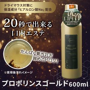 ピエラス Propolinse プロポリンス ゴールド 600ml 1本 洗口 洗口液 口腔環境 改善 ヒアルロン酸配合 うるおい マウスウォッシュ 低刺激|bicymt