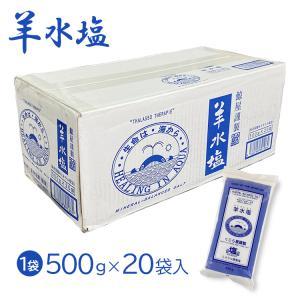 羊水塩 500g×20袋 美容 バスソルト 入浴剤 ミネラルや海洋深層水イオン等を人体液と同様に配合 ミネラル調整塩 big-market