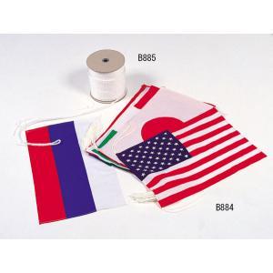 〔トーエイライト〕万国旗(20カ国1組)★B884|big-play