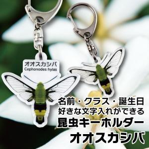 昆虫 名入れ キーホルダー おしゃれ  DM便送料無料 名前やクラスなど文字入れできる昆虫キーホルダー オオスカシバ|bigbossshibazaki