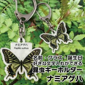 DM便送料無料 名前やクラスなど文字入れできる昆虫キーホルダー ナミアゲハ(アゲハチョウ)|bigbossshibazaki