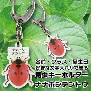 DM便送料無料 名前やクラスなど文字入れできる昆虫キーホルダー ナナホシテントウ|bigbossshibazaki