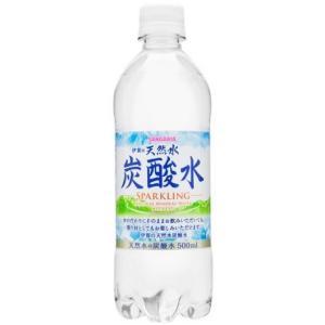サンガリア 伊賀の天然水炭酸水 500ml×1ケース/24本(024)|bigbossshibazaki