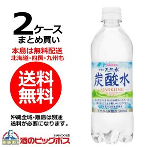 送料無料 サンガリア 伊賀の天然水炭酸水 500ml×2ケース/48本(048)|bigbossshibazaki