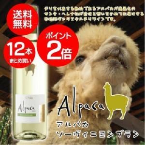送料無料 ポイント2倍 サンタ・ヘレナ アルパカ ソーヴィニヨン・ブラン  750ml×12本(012) wine|bigbossshibazaki