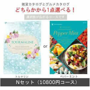 10600円コース(税込 11448円コース) Nセット (...