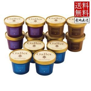ガレー プレミアム アイスクリーム セット GL-EG12 (代引不可・送料無料) 出荷可能時期:〜8月31日まで (2019 お中元 限定)|bighand
